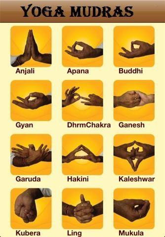 Yoga Mudras                                                       …