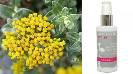 Heal Rosacea And Other Skin Problems With Immortelle Tonic