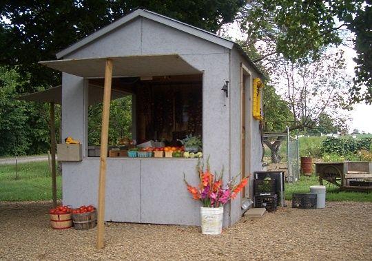 Amish Produce Stand amish