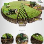 清晰明瞭 農業圖表資訊設計