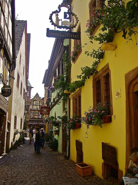 Alley in the beautiful alsacian village of Riquewihr, France.