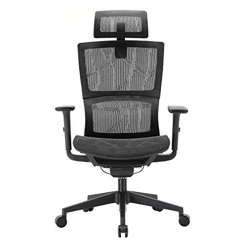 XUER Ergonomic Office Chair with Cozy Lumbar Support and ...