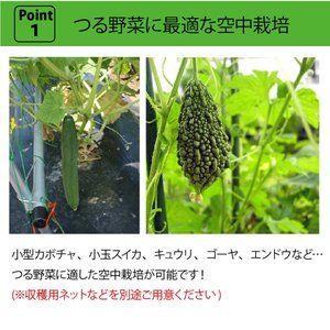 第一ビニール 空中栽培つる棚セット Tds 1 8 H 野菜作り 園芸 栽培