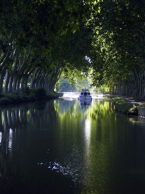 Canal Du Midi, Trebes by john.trebes, via Flickr. We will end our journey on the Canal du Midi in Trebes.