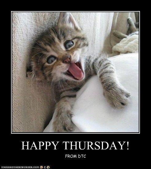 Happy Thursday: