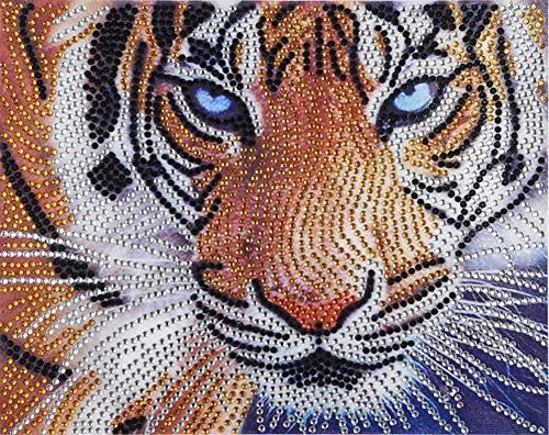 DIY Full Drill 5D Diamond Painting Mosaic Rhinestone Tiger Stitch Kits Souvenir