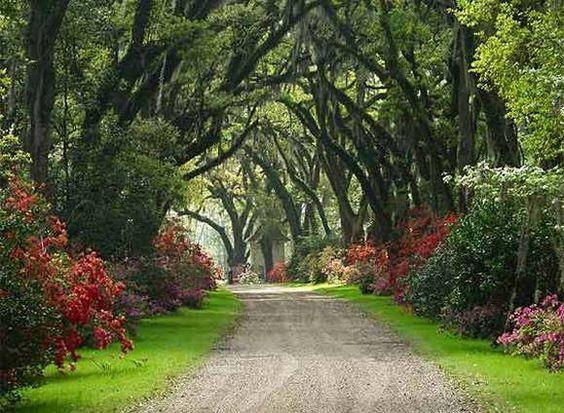 pour vous, le plus beau paysage ou monument magique, insolite, merveilleux - Page 6 Caf5c01721675c85a7a32e6c54938a59