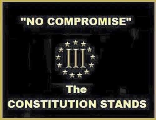 """~ Always Out Front ~ Minuteman Militia ~ """"The government was set to protect man from criminals, and the Constitution was written to protect man from government."""" ~ Ayn Rand"""