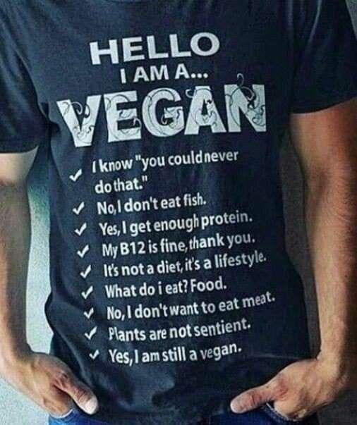 Pin By Ann Estes On Plant Based Vegan Fun In 2020 Vegan Quotes Vegan Facts Vegan Inspiration