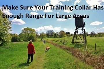 Dog Training Collars 2 Dogs The Best Training Collars For