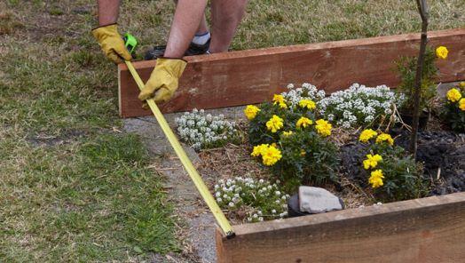 How To Build A Garden Bed Bunnings Warehouse Garden Beds Garden Garden Edging