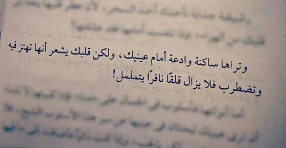 اقرأ لي Iqraaly تويتر Words Quotes Sweet Romantic Quotes Funny Arabic Quotes