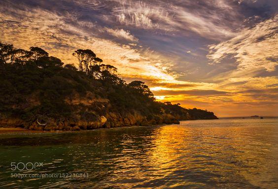 Golden Island. by kwalmsley2001. Please Like http://fb.me/go4photos and Follow @go4fotos Thank You. :-)