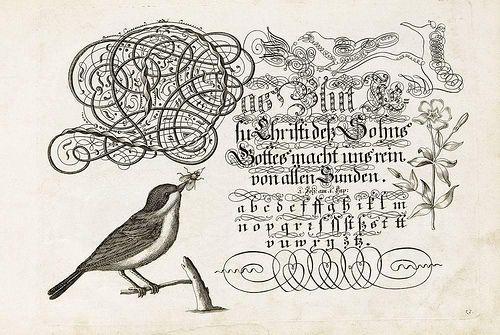 'Vorschrift Deutsch-Lateinisch und Franczösischer Schriften Geschrieben' by Johann Jacob Losenawer