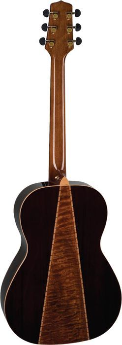 Takamine Acousitc G4065- my guitar, my love.