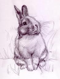 """Résultat de recherche d'images pour """"dessiner un lapin"""""""
