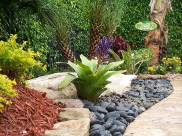 Front yards tropical and yards on pinterest for Landscape design miami