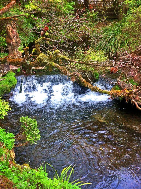 Irland 2014 Japanischer Garten