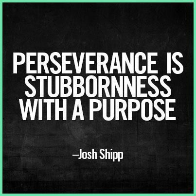 "I will never again say that I am ""stubborn""...I will say I ""persevere "":"