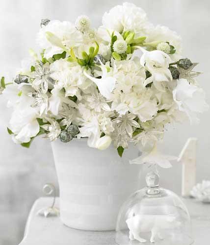 Einen guten Rutsch wünschen wir! Mit Blütenpracht, ganz in Weiß – einer wirklich zauberhaften Farbe.