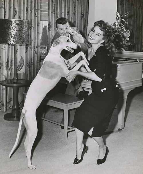 Greyhound! Abbe Lane and Xavier Cugat
