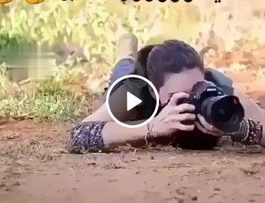 a mulher filmando a cobra