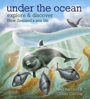 Review of Under the Ocean on Around The Bookshops: Non-Fiction Pre-School up