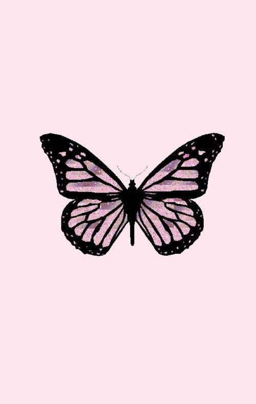 Artsy Aesthetic Butterfly Wallpaper