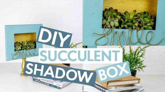 DIY Succulent Shadow Box
