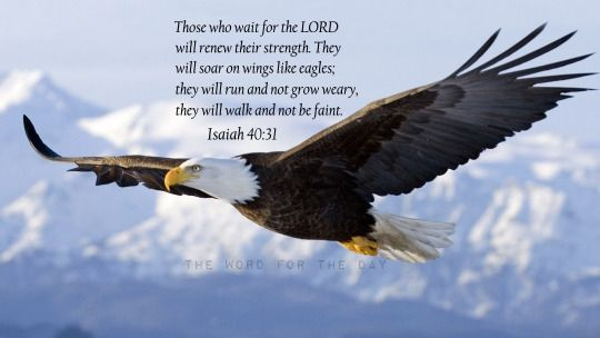 Eagle, Soaring Eagle, Bible Verse, Bible Quotes, Christian