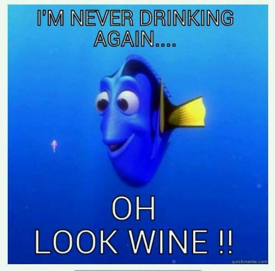 This has been me before (hate to admit it) but not with wine - margaritas maybe, but definitely not wine!