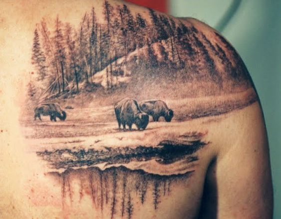 amazing buffalo tattoos pinterest old photos dads and horse love. Black Bedroom Furniture Sets. Home Design Ideas