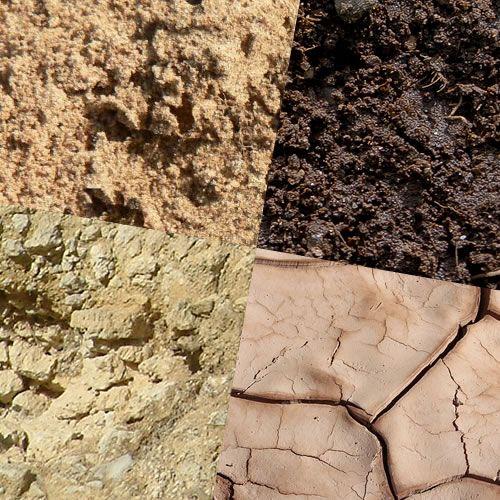 Les Differents Types De Terre De Jardin Analyse Du Sol Conseil
