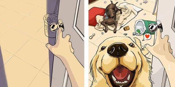 As Diferenças Na Nossa Vida Antes E Depois De Um Cão!!
