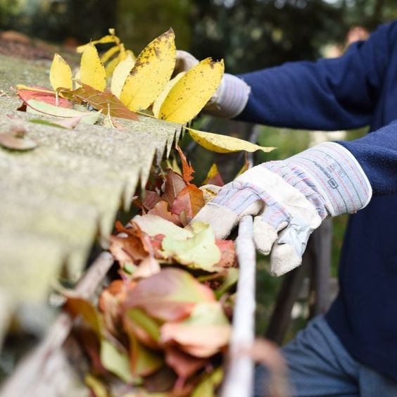 Eavestrough Toronto provides services to clean eavestroughs in residential and commercial buildings in Toronto. Specialized in Eavestrough cleaning, repairs, & installation in Toronto since 2010.