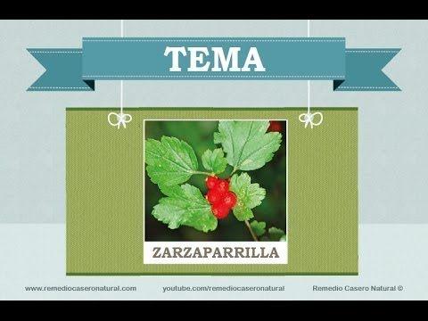 Beneficios, nutrientes y propiedades de la zarzaparrilla. Más información en: http://www.remediocaseronatural.com/comidas-sanas-beneficios-zarzaparrilla.htm