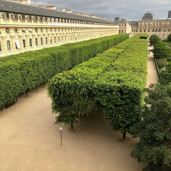 Habitually Chic® » Jacques Grange's Palais-Royal Apartment
