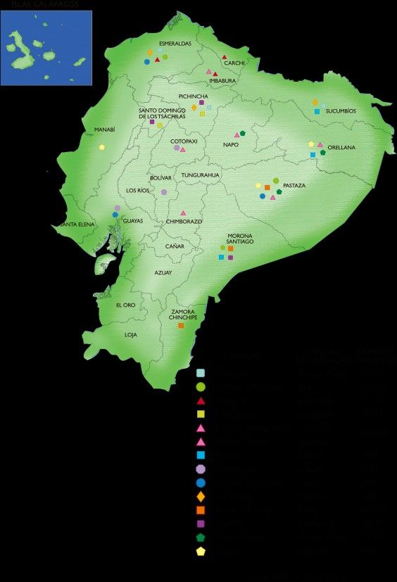 Pin On Megadiversidad Del Ecuador