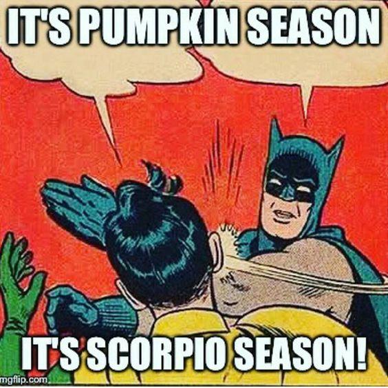 """""""#batman #batmanknows #batmanknowsbest #pumpkinspice #♏ #scorpio #scorpioseason #teamscorpio"""""""