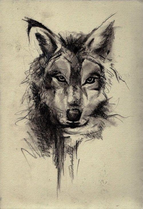 Wolf Face Sketch Art Wallpaper Best Iphone Wallpaper Wolf