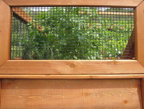 Plan A With Awesome Decoration And Rabbit Proof Garden Fence ...