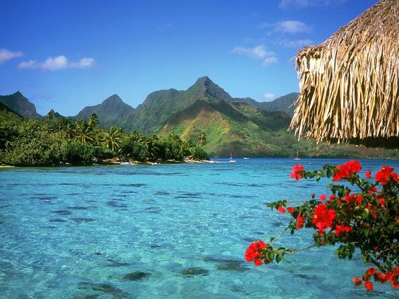 Bora Bora in Polynesia, France.. your dreams are as real as you want them to be