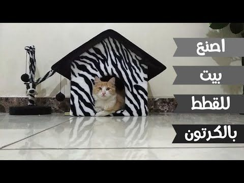 كيف تصنع بيت للقطط بالكرتون Diy Cardboard Cat House Youtube Cardboard House Resin Art Cat House