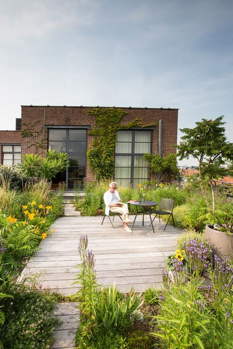 a rooftop garden for an outdoor living space #garden #rooftopGarden #roof #homeImprovements #containers #outdoorSpace