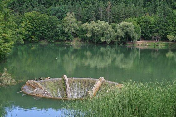 lacul-vaida1