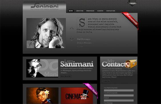 wordpress portfoliotheme - Sanimani.com