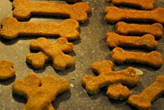 Squash It: DIY Organic Squash Dog Cookies