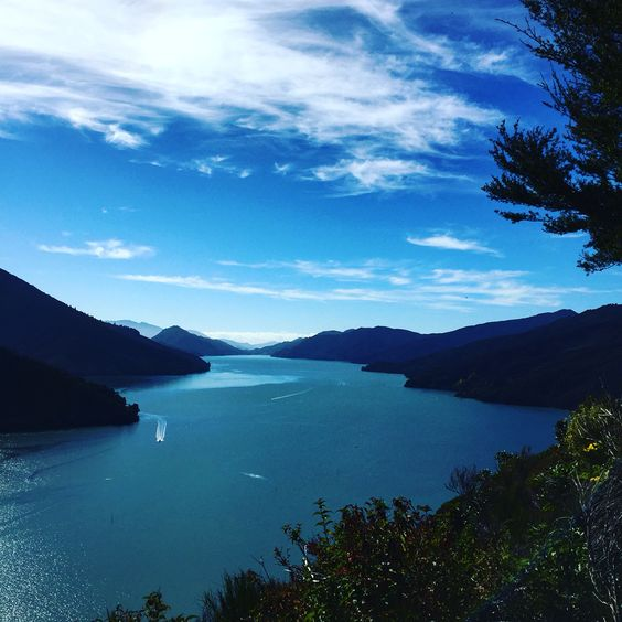 South Island, New Zealand    Pinterest.strivetobefree.com