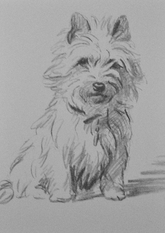 Cairn terrier hond Vintage gemonteerd 1936 'Mac' door Hollysprints