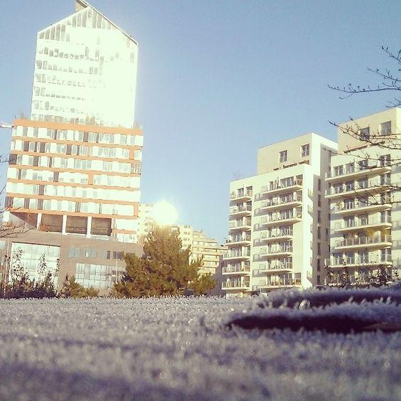 Petite Nouvel grand instaboulogne de gel par @beringuei - instaview.me